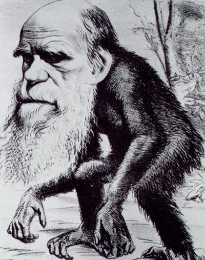 Darwin_ape[1]