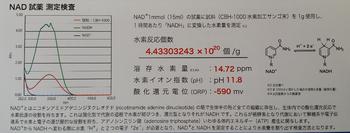 NAD鉄人水素