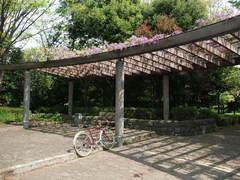 馬引沢南公園