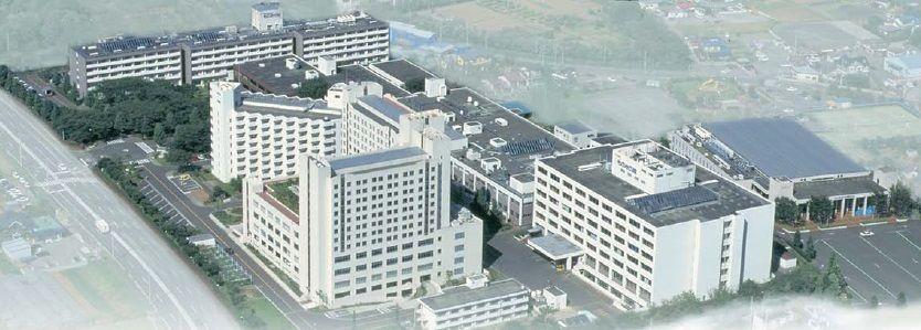 の 日本 エホバ 証人