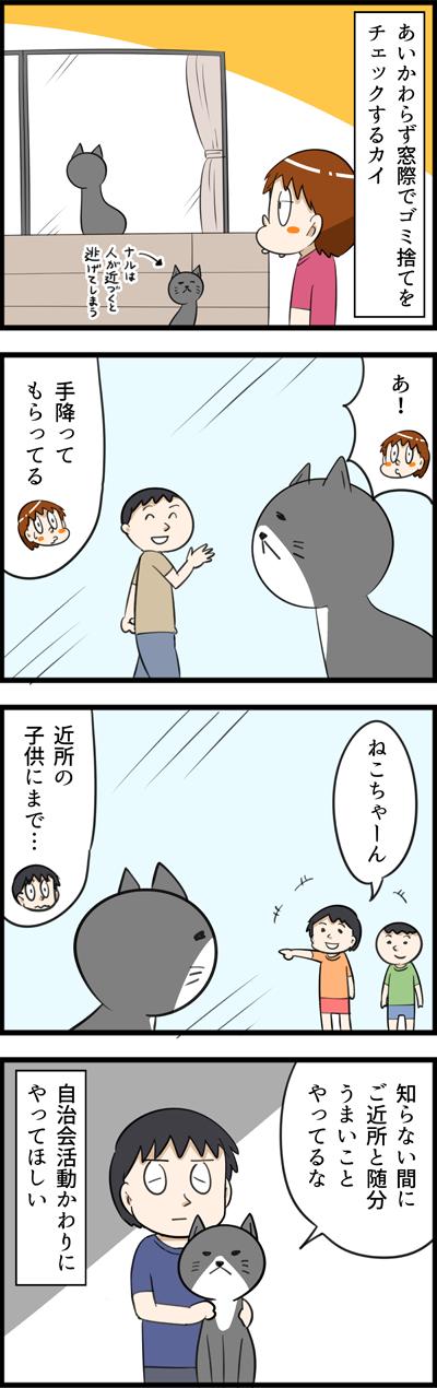 かい livedoor かい