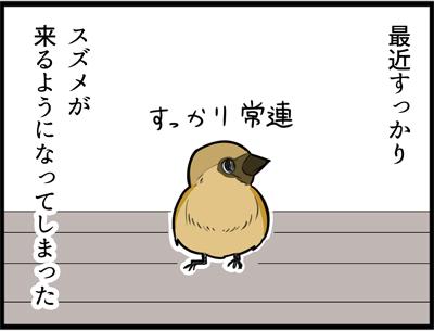 f:id:rise_more:20160517234741j:plain