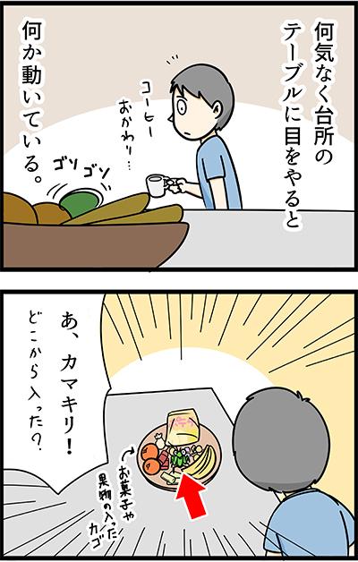 f:id:rise_more:20150701000301j:plain