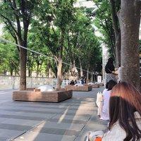 【たまアリ グッズ列】5/25「ジャニーズ IsLAND Festival」スノトラなにわ合同公演