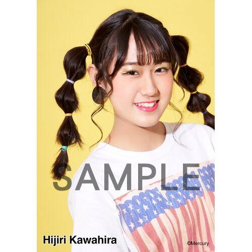 HK-245-20007-32653_p04_500