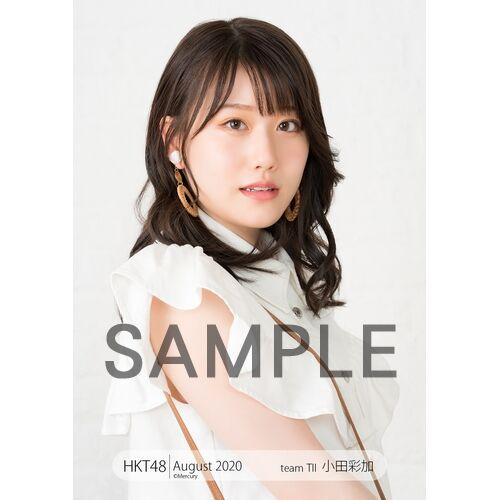 HK-245-20007-32751_p01_500
