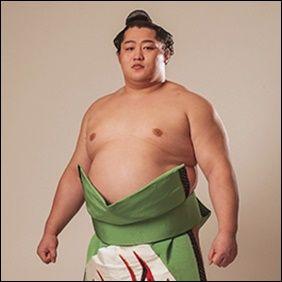 大相撲遠藤