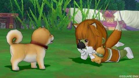 150_柴犬
