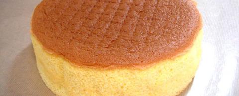 sponge01