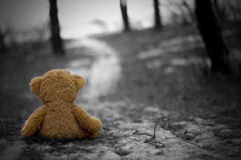einsames-b-C3-A4rchens-ein-wirklich-trauriges-bild