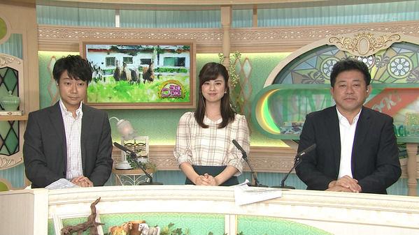 【画像】今日の曽田麻衣子さん@KBS京都  9.15