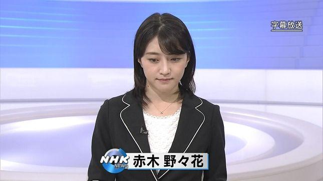 赤木野々花アナ NHKニュース