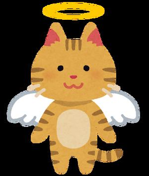 【閲覧注意】ペチャンコにされたかわいそうな猫がコチラ・・・