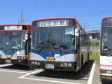 IMG_8545