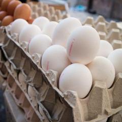 卵の賞味期限切れ、いつまで食べて大丈夫? 見分け方と長持ちする保管方法