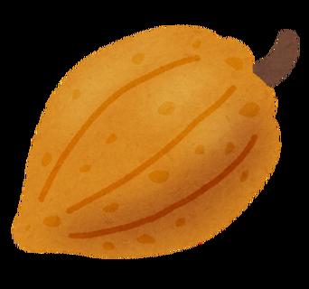 fruit_cacao_kakao