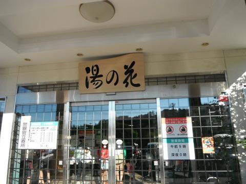 yunohana2