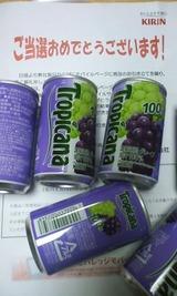 b7953b11.jpg