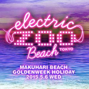 ElectricZooBeachTokyo2015