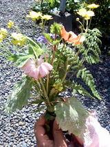 野花の花束