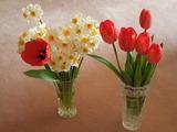 お部屋が可愛く華やかに♡『切り花』の素敵アイデア集