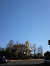 ceb89e48.jpg