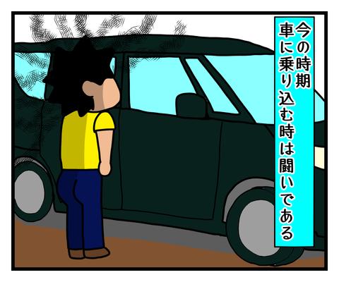 IMG_6173