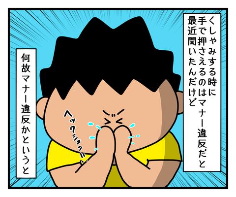 IMG_5293