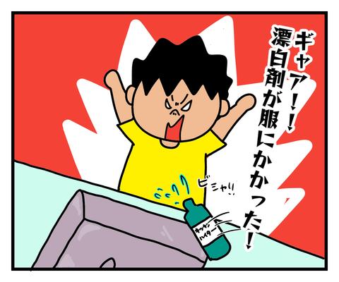 IMG_2315