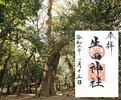 生田神社g