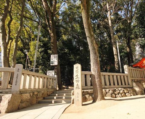 生田神社c