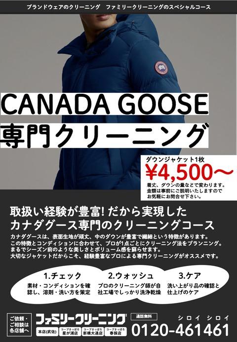 200221_カナダグース専門コース