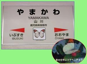 山川幸せの蝶適