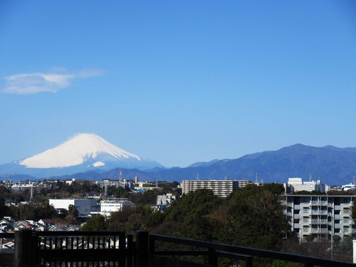 IMG_6869富士山2021-3-14