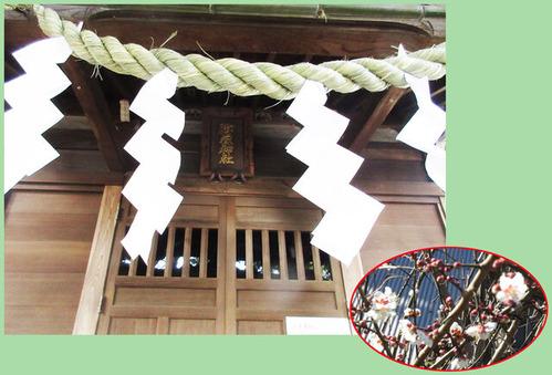 御嶽神社と梅合適