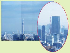 すかいつりーと東京タワー適