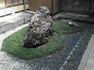 曹洞宗一乗寺の枯山水庭園