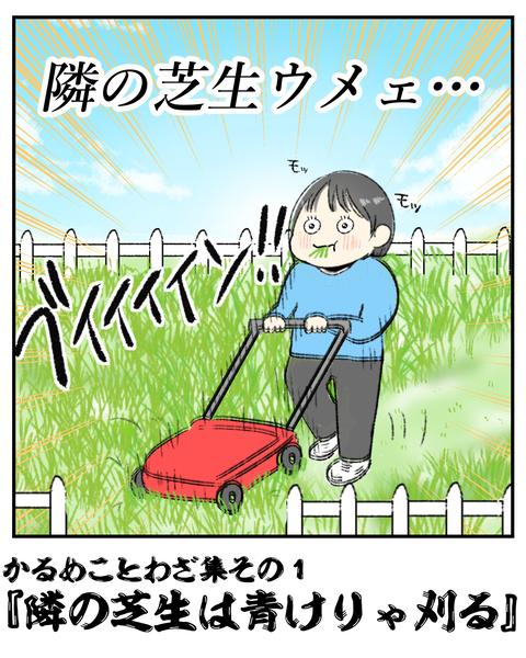 隣の芝生は青く見える_006