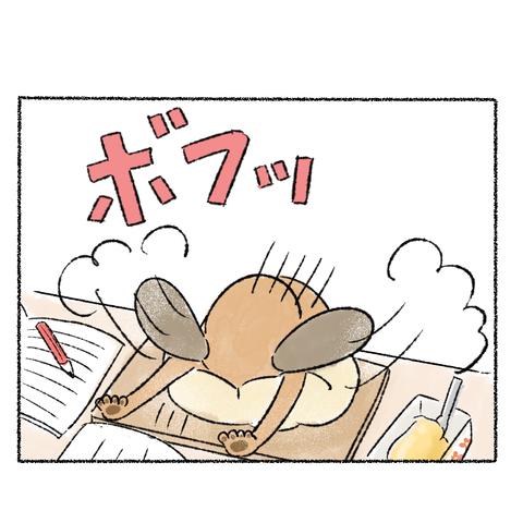 研究_003