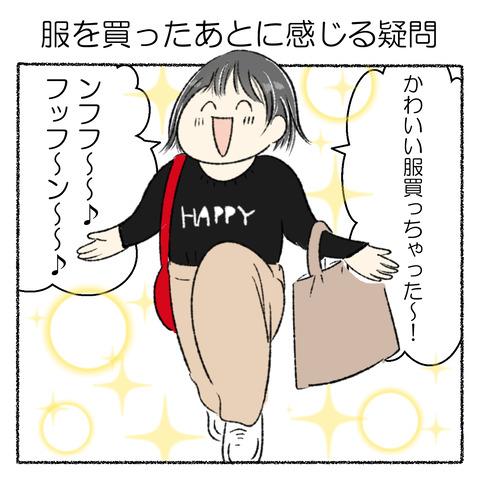 新しい服を買うと_001