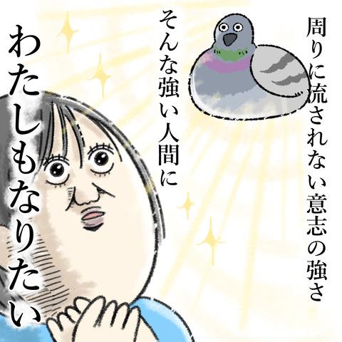 駅のホームの鳩_004