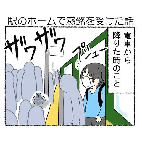 駅のホームの鳩_001