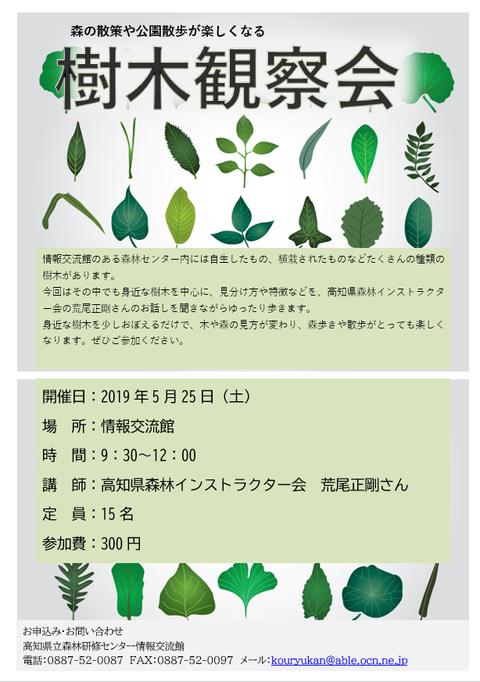 20190525樹木観察会