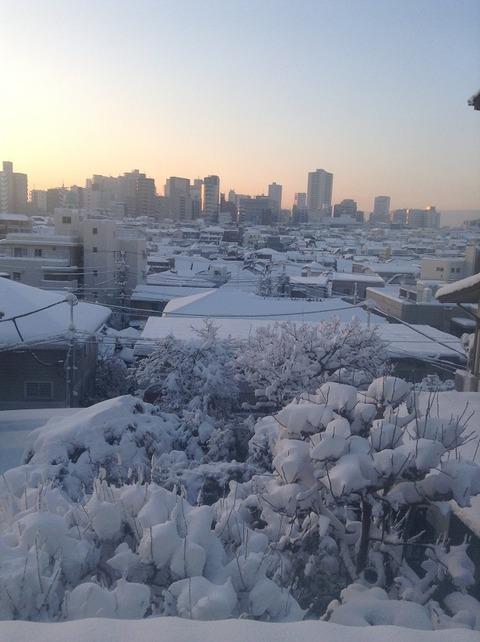 2018年1月大雪 2階の窓から