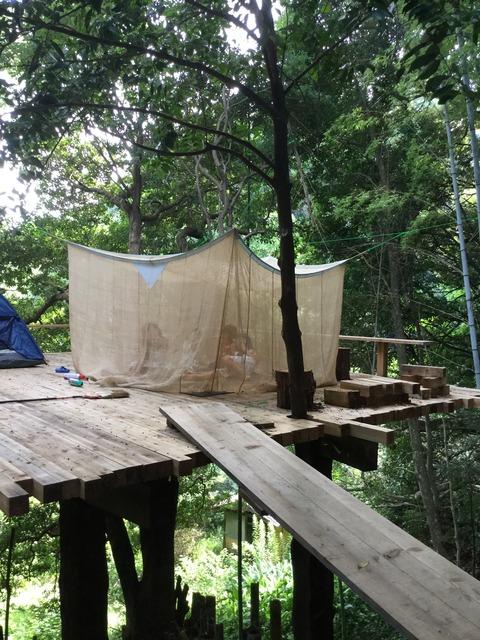 ツリーハウスの蚊帳