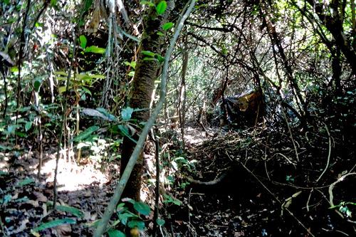 13DSC00461 ルーンシンハイド2の隠れ小屋