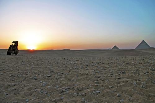 エジプト・ラクダ・ピラミッド夕日