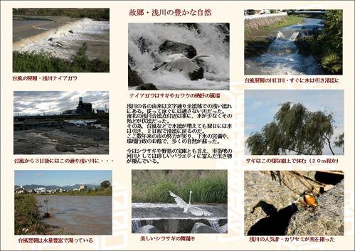 故郷・浅川の豊かな自然