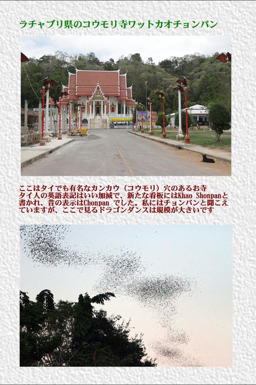 9ラチャブリ県のコウモリ寺ワットカオチョンパン