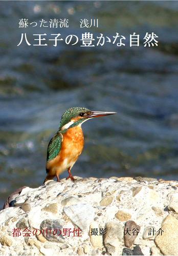 蘇った清流浅川 八王子の豊かな自然1 フチなし のコピー